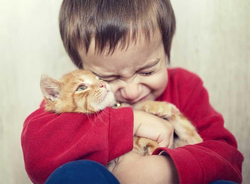 Como dar atenção ao seu animal de estimação com a chegada do bebê?